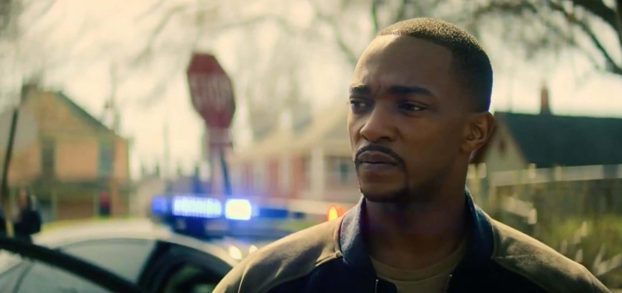 The Falcon and The Winter Soldier Fans Infuriated Over Sam Being Racial  Profiled by Police